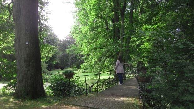 Fünf Tipps: Parklandschaft auf dem Friedhof Ohlsdorf