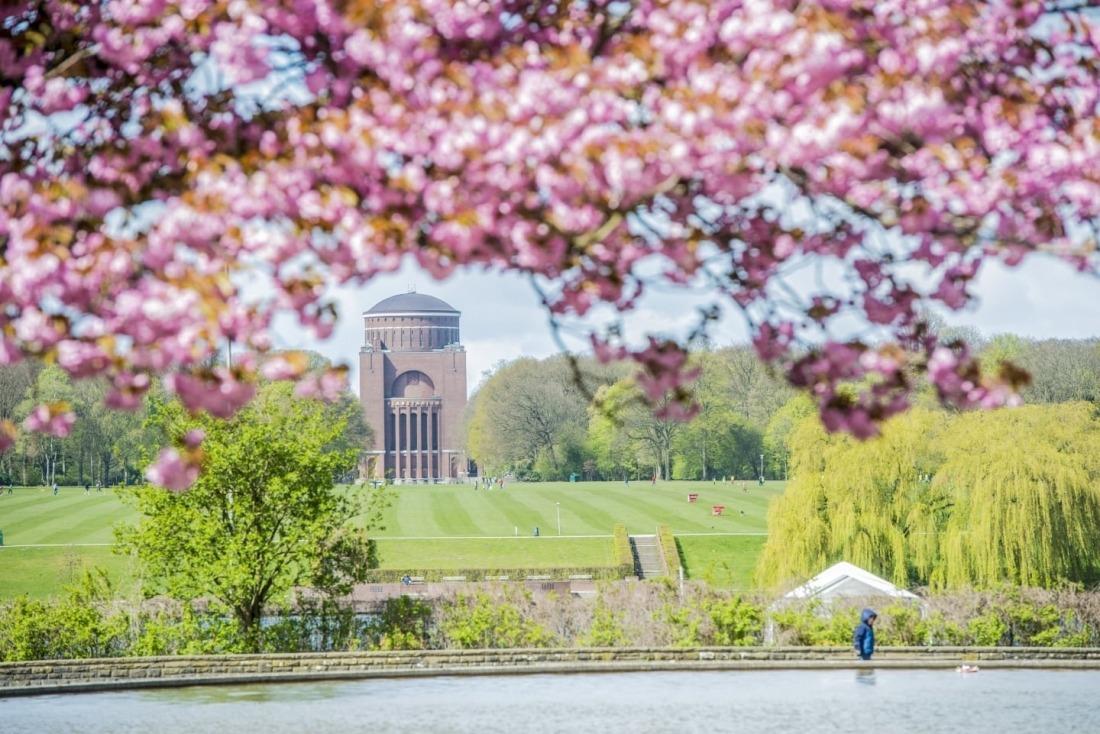 Frühling zum Gucken: Stadtpark