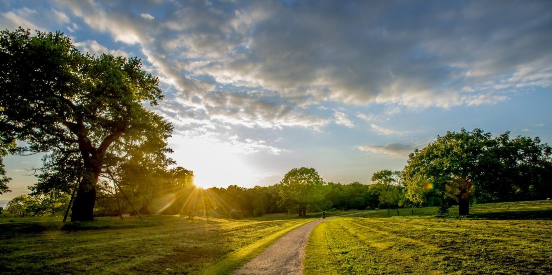 Fünf Tipps: Landschaft im Jenischpark