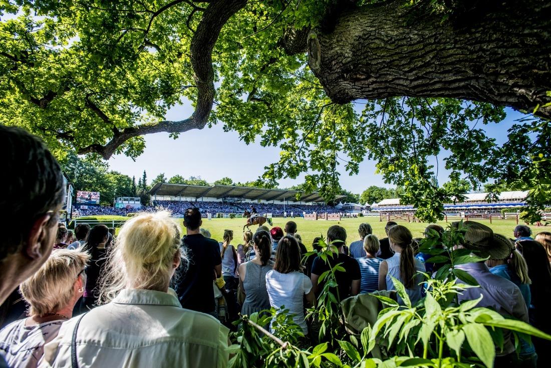 Hamburger Derby: Zuschauer