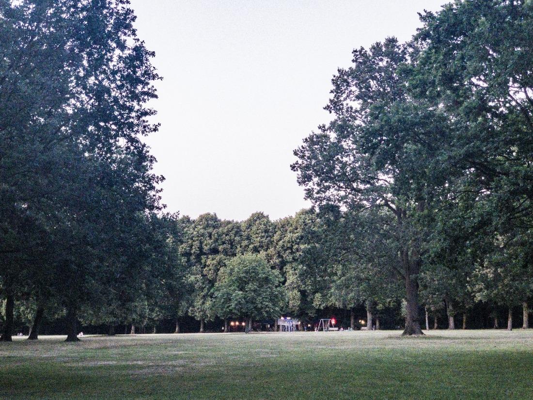 Parks in Hamburg: Bäume im Volkspark