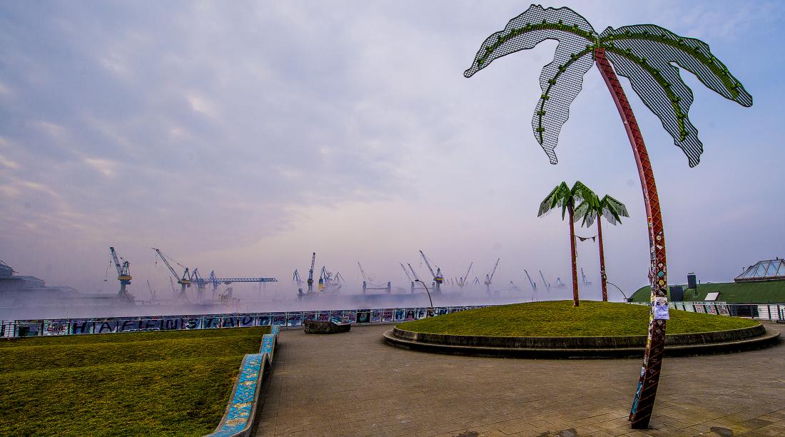 Südliches Lebensgefühl: Palmen im Park Fiction