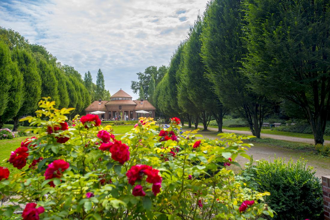 Sommer ahoi! Der Stadtpark in voller Blüte