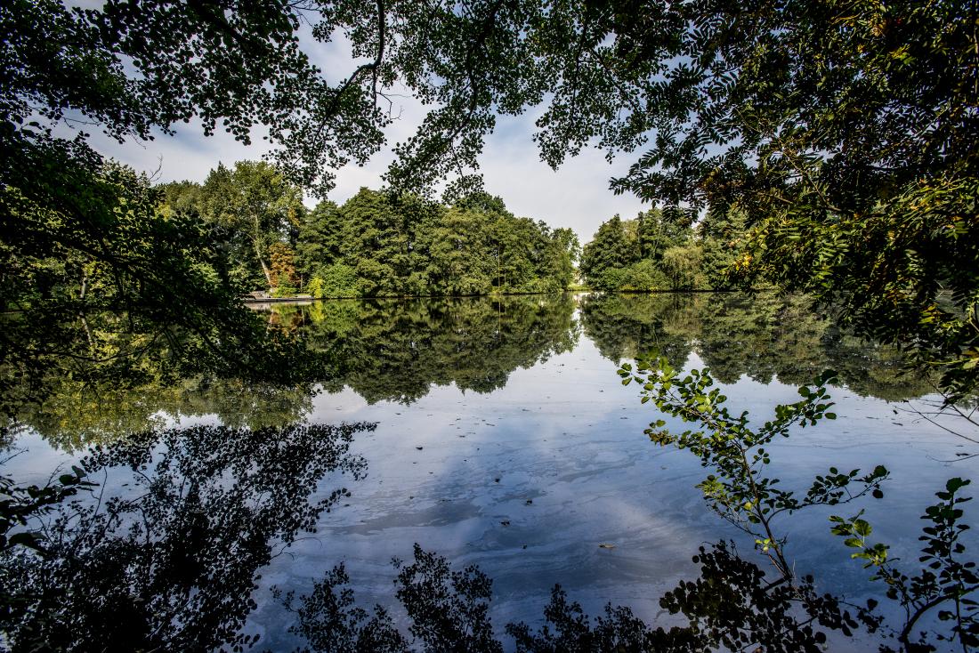 Grün & Blau: Idylle am Inselparksee