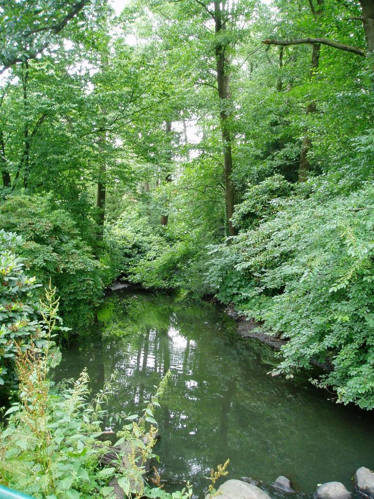 Grün & Blau: Märchenwald im Fischers Park