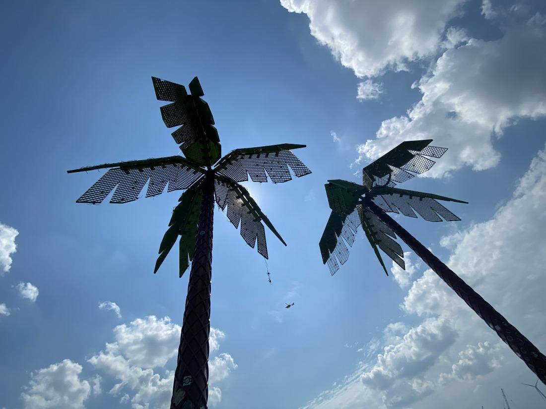Unterwegs in Altona: Palmen im Park Fiction