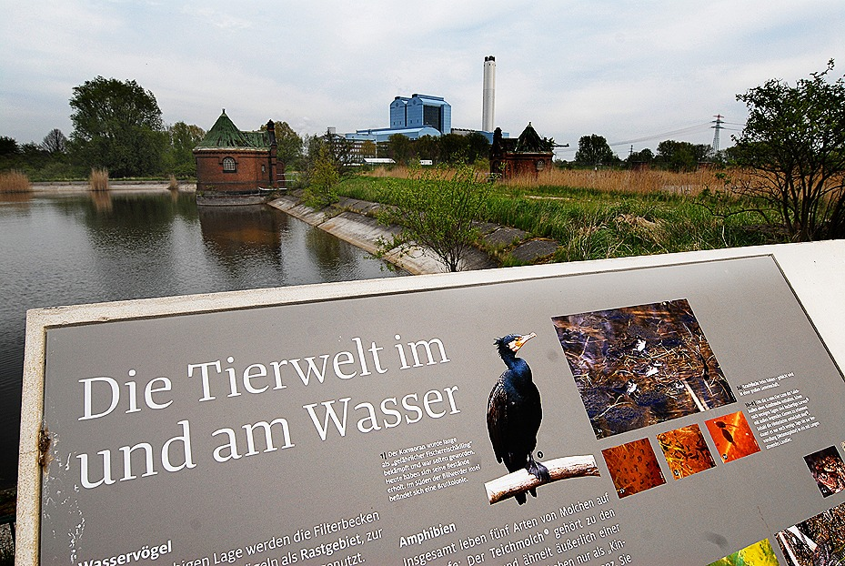 Wohin in Hamburg: Kaltehofe