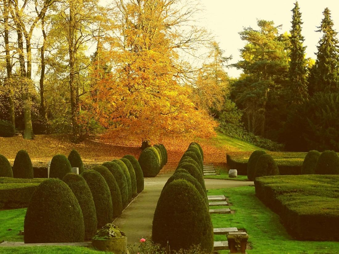Friedhof Ohlsdorf: Gräber und Gartenarchitektur