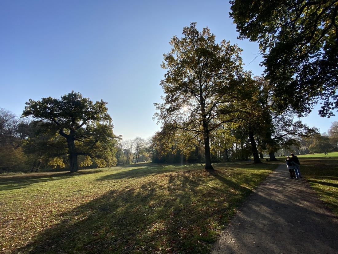 Spaziergänger im Jenischpark