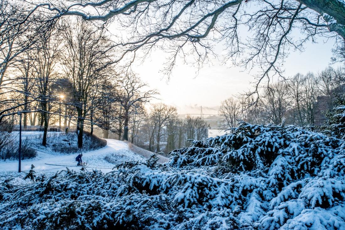Winter: Verschneites Hamburg