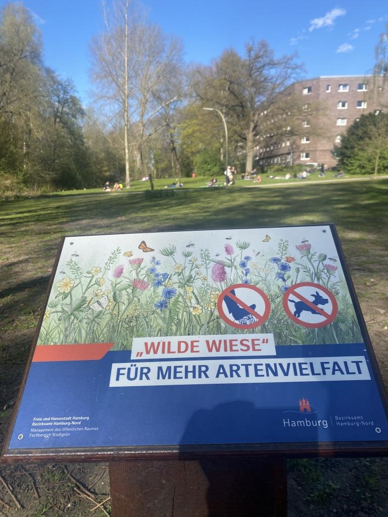 Dulsberg: Wilde Wiesen für mehr Artenvielfalt
